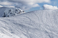 Snow off piste slope for freeriding with traces from skis, snowboards and silhouette of freeriders