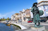 Staute da Salineira, Aveiro, Portugal