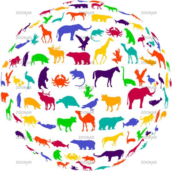 colorful wildlife