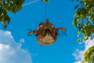 Skulptur vom Fliegenden Fisch am Strand von Poyalisa