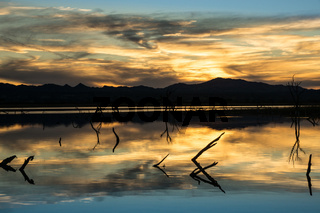 Desert Wetlands Sunset