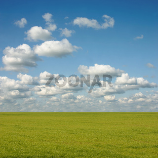 Cloud Landscape