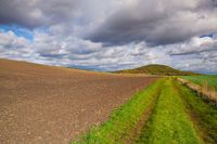 On the empty road in Central Bohemian Uplands
