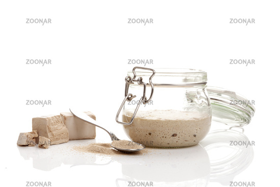 Different types of yeast.