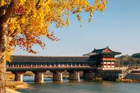 Woljeonggyo Korean traditional bridge and autumn ginkgo tree in Gyeongju, Korea