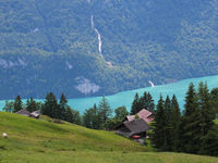 Lake Brienz and Giessbach Falls seen from Planalp.