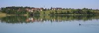 Dream like summer morning at the shore of Lake Pfaffikon, Pfaeffikon. View of Seegraben, Seegraeben.