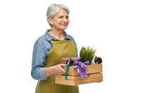 smiling senior woman with garden tools in box
