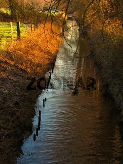 Flusslauf am Niederrhein