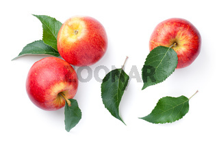 Fresh Red Apples With Green Leaves Isolated