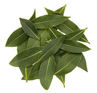 Heap of fresh bay leaves, top view