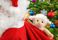 Sweet stuffed animal in Santa's bag
