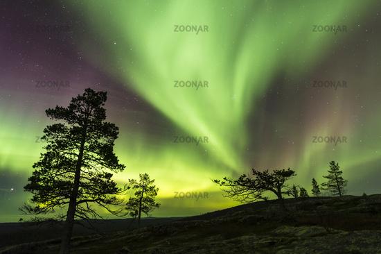 Northern lights (Aurora borealis), Lapland, Sweden