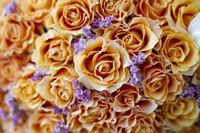 Background many orange roses.