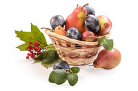 fruits and berries in a basket on a white background with soft shadow