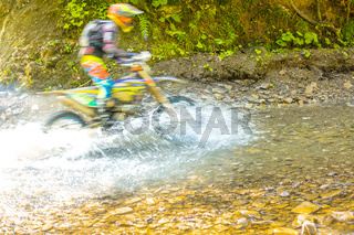 Summer Sunny Forest and Enduro