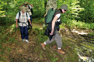 Jakobspilger im Wald bei Roncesvalles