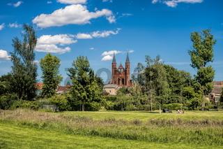 kyritz, deutschland - 03.06.2020 - rosengarten mit st. marien im hintergrund