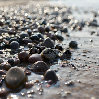 Steine am Strand der polnischen Ostseeküste bei  Kolobrzeg