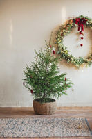 Christmas wreath on concrete wall