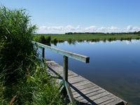 Wooden footbridge on the Swina Delta