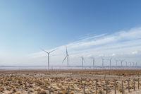 wind farm on desert wilderness