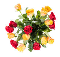 top view of bunch of red and yellow roses isolated