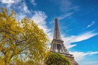 Paris France, city skyline at Eiffel Tower and garden in spring season