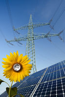 Solar modules, sunflower with socket and power pole
