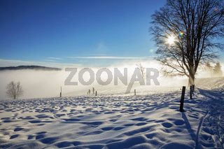Wintertag am Schauinsland im Schwarzwald