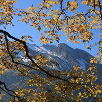 Autumn scene in Innerthal, Switzerland.