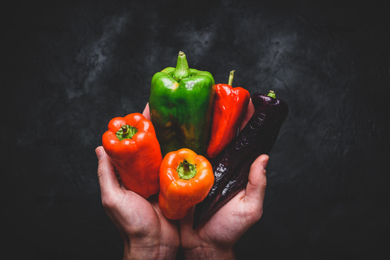 Hands with different bell peppers