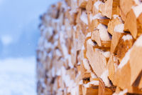 firewood with snow side view environment