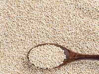 Grain of quinoaб copy space