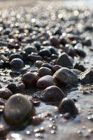 Stones on the beach of the Polish Baltic Sea coast near Kolobrzeg at sunset in backlight