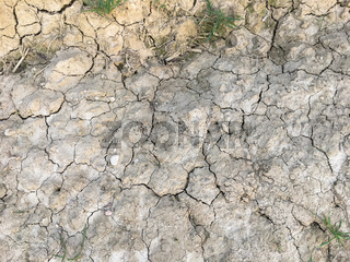 Dry soil closeup texture