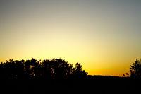 Twilight sky, dusk, nightfall,sillouettes of trees