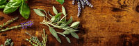 Fresh aromatic herbs panorama with sage and a place for text, shot from above