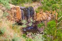 Trentham Falls - Trentham