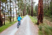 Lilydale to Warburton Rail Trail in Australia
