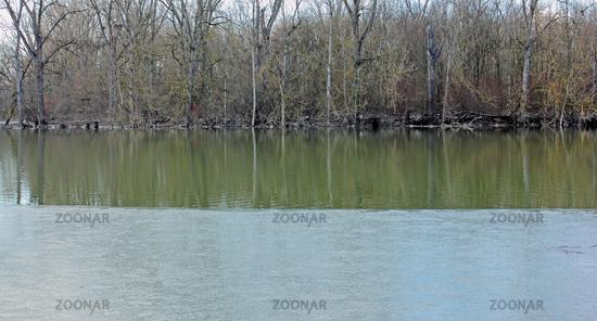 Biedensand nature reserve after a flood