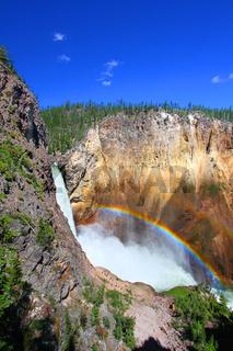 Rainbow at Lower Falls - Yellowstone