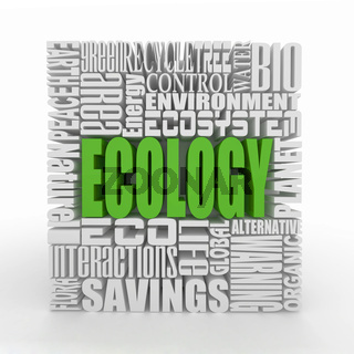 What is a Ecology. The concept of the words on white isolated background. 3d