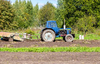 Old wheeled agricultural tractor working at the potato plantation