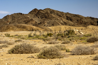 Terrain im Richtersveld-Nationalpark, Südafrika
