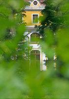 View through leafy green onto the baroque Neschwitz Castle, portrait format