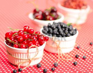 Wild berries in bowls