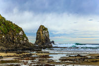 Pacific coast of the South Island