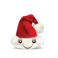 Santa Claus Hat Isolated on white