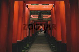 Visitors walking through tunnel of orange torii gates at Fishimi Inari Taisha shrine in Kyoto, Japan